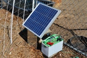 A dinner-plate sized solar panel powers the battery that electrifies the moveable fence that keeps the herds on the right path.